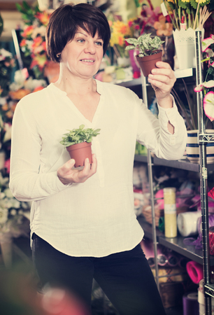 Smiling woman client deciding on best begonia to buy in flower shop