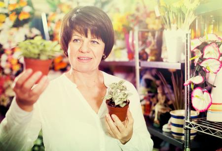 Female customer choosing best begonia to buy in flower shop