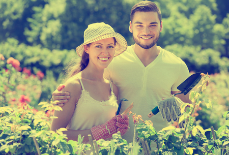 Cheerful couple planting plants in the garden Stock Photo