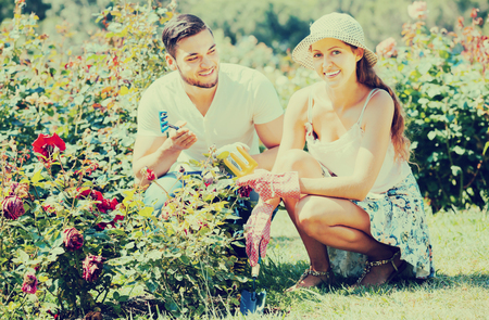 Young couple seedling garden plants in summer day