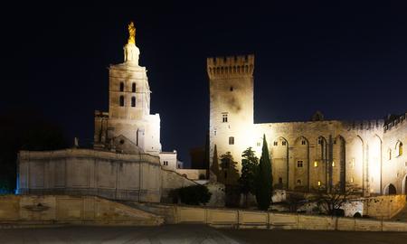 Night view of Palais des Papes, historic centre of Avignon, France Banco de Imagens