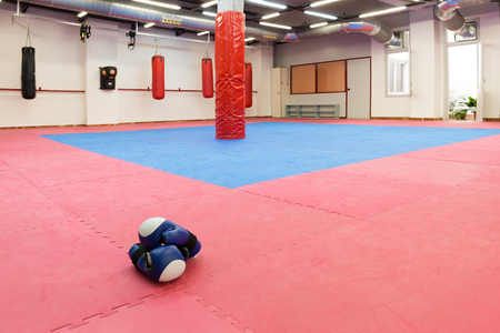 Image of boxing space in sporty gym indoors.