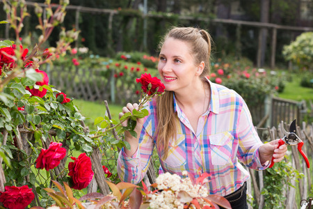 happy young english woman with long curly hair smells roses flower outdoor Stock Photo
