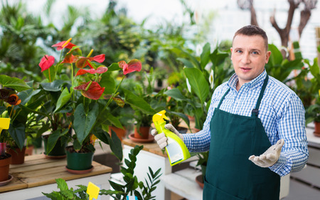 Glad pleasant smiling man gardener is demonstraiting substances for care of flowers in greenhouse.