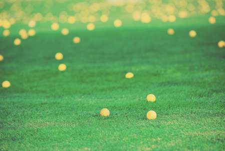 Golf balls lying on golf course after hitting attempts