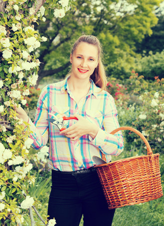 smiling english  female holding a basket and standing near the blooming roses
