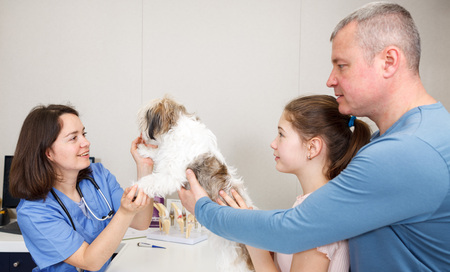 Professional woman veterinarian consulting anxious father and daughter with small dog in clinic Stock Photo
