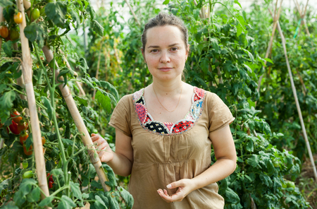 Smiling woman gardener standing near tomatoes seedlings in  greenhouse