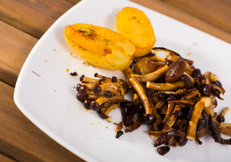 Delicious cooked fried  honey fungus mushrooms with young potatoes at plate