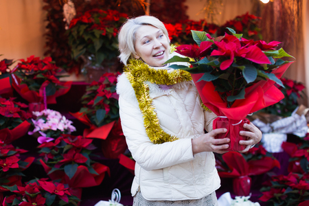 Positive mature woman buying  flowers at Christmas Fair outdoor