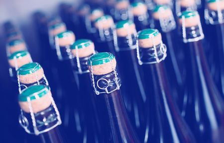 Numerous sparkling wine bottles kept on shelf in storage Stock Photo