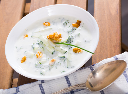 Southeast European cuisine. Traditional chilled soup Tarator with yogurt, fresh cucumber, dill and walnuts
