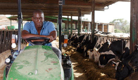 Portrait of African-American male worker sitting in tractor on dairy farm Фото со стока