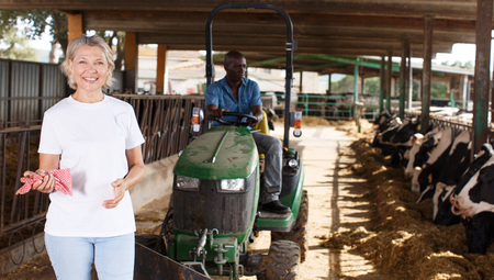 Female proffesional farmer  standing near cow and man sitting at car at  farm Stock Photo