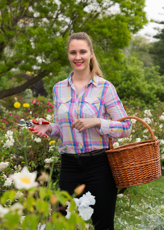 smiling female holding a basket and standing near the blooming roses