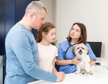 Professional woman veterinarian consulting anxious father and daughter with small dog in clinic Banque d'images