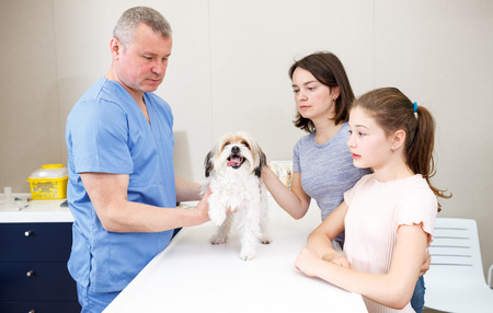 Mother and daughter concerned about health of their dog, consulting by veterinarian
