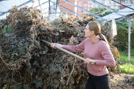 Woman farmer removing biodegradable fertilizer from leaves of plants for fertilizing in farm