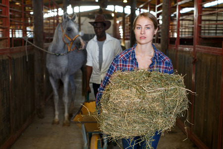 Positive man and woman feeding horses with hay at stable Фото со стока