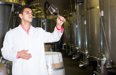 Portrait of male sommelier checking wine fermentation in winery interior 写真素材