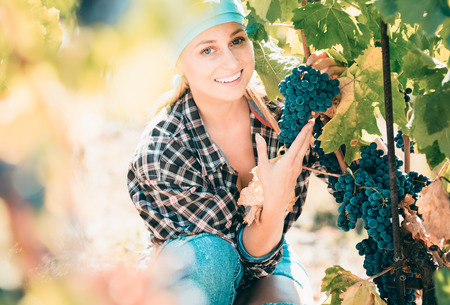 Portrait of positive female worker at grape farm in summer day