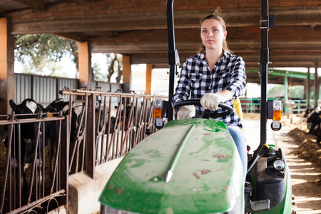 Portrait of young woman dairy farm owner working on tractor in cowshed