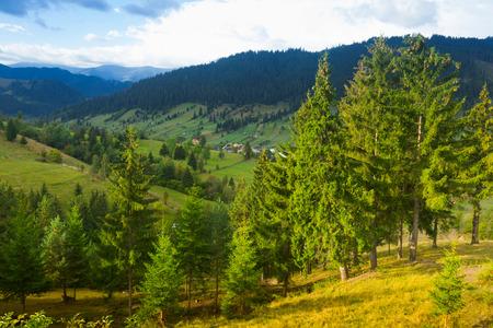 Image of Karpaty mountains on Bucovina in Romania. Фото со стока