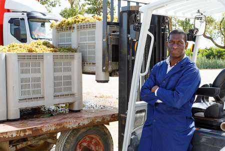 Glad positive  male forklift driver unloading delivered grapes harvest from truck platform Stock fotó