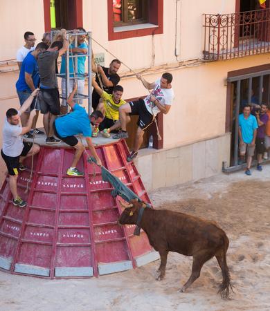 LA POBLA TORNESA, SPAIN - August 08, 2016:  Bull chasing people during celebrations Redakční