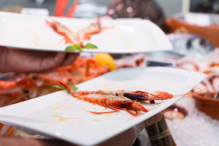 Closeup of grilled langoustine decorated mint leaves on white dish in hand of waiter