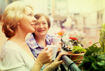 Two aged housewives drinking tea at terrace with decorative plants Stock Photo