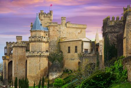 Castle of Olite in summer evening time. Navarre, Spain Reklamní fotografie