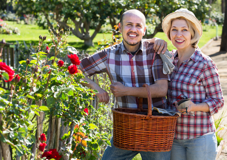 Happy adult couple engaged in gardening in the backyard garden Archivio Fotografico