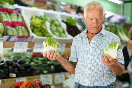 Portrait of older man choosing fresh vegetables in farmer market