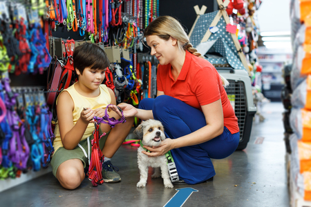 Tweenager and his positive young mother looking for supplies for little dog in petshop