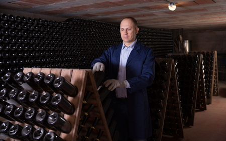 Wine producer controlling wine aging in bottles on wooden racks in winery vault