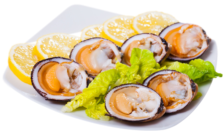 Raw dog cockles served with lemon and greens on white platter. Isolated over white background Stock Photo