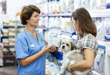 Jolly  mature woman veterinary consulting female client with cute havanese about pet dry feed in clinic