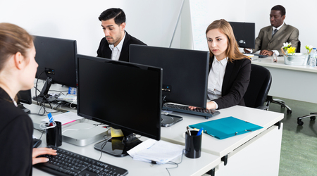 Portrait of team of diligent positive buisness people working with laptops in office