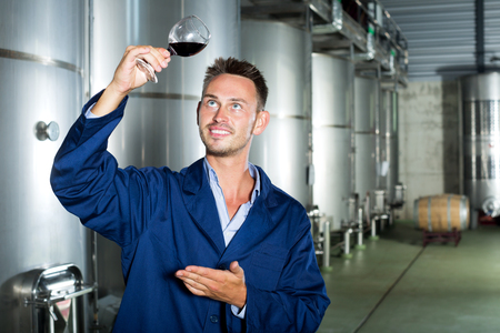 Portrait of positive young man in uniform looking at wine sample in glass on wine factory