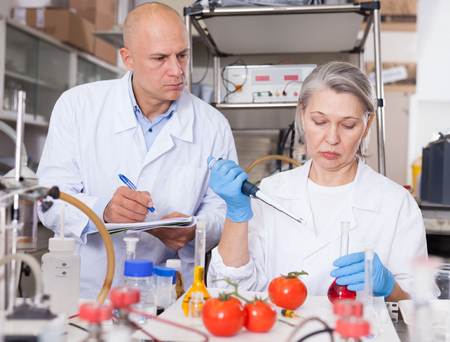 Two experienced biochemists checking fruits and vegetables for nitrates and pesticides in modern laboratory, recording experimental procedure and results Reklamní fotografie