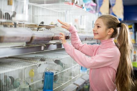 Klein lachend meisje dat een mooie vogel kiest om in de dierenwinkel te houden Stockfoto