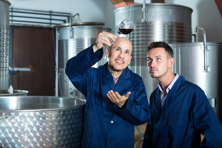Positive two factory workers in uniform standing together and examining sample of wine in glass