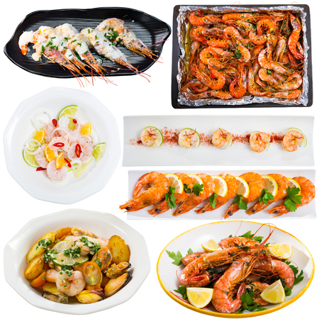 Collection of various appetizing cooked dishes of shrimps isolated on white background