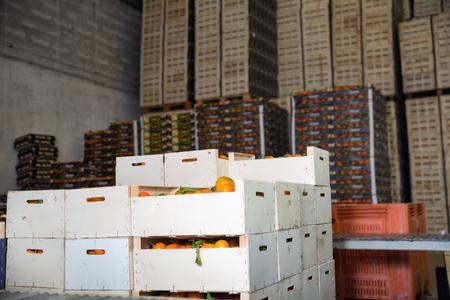Stacks of  fruit boxes with fresh ripe sweet, tasty mandarin oranges in storage warehouse