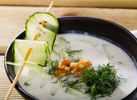 Traditional Macedonian cold vegetable soup Tarator with cucumber, walnuts, garlic and yogurt Zdjęcie Seryjne