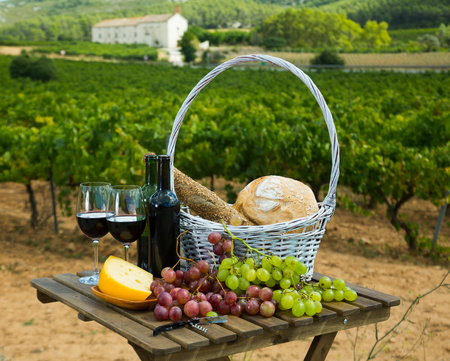 Red wine bottles and glasses with cheese, bread in basket and grapes overlooking vineyard Фото со стока