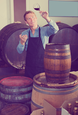 attractive seller man wearing apron suggesting to try glass of wine in wine cellar Reklamní fotografie