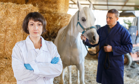 Portrait of female veterinarian at horse stable with male worker on background
