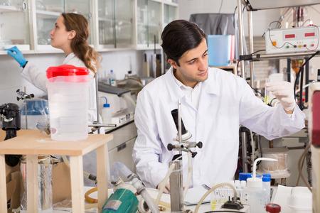 Técnico de laboratorio joven enfocado que trabaja con reactivos en tubos de ensayo durante el experimento químico Foto de archivo